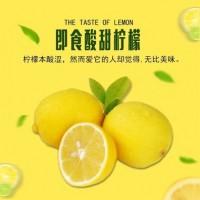 四川安岳黄柠檬当季新鲜采摘 美味酸爽新鲜柠檬水果一件代发批发