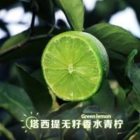 塔西提无籽香水青柠 青柠檬一件代发 无籽柠檬