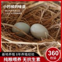 土鸡蛋五谷绿壳蛋360枚装农家散养绿壳鸡蛋乌鸡蛋批发鲜鸡蛋
