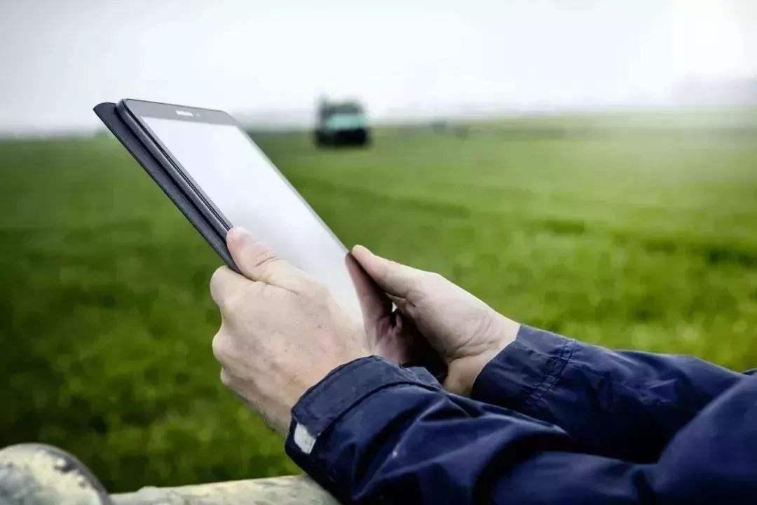 """数字化农业工厂 破解蔬菜育苗的智能""""密码"""""""