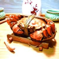 江苏红膏大闸蟹2两到5两公蟹勤府大闸蟹食用大量兴化红膏螃蟹批发