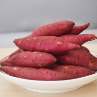 临安天目山小香薯新鲜红薯小番薯地瓜山芋拇指薯5斤装批发代发