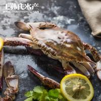 鲜冻母梭子蟹 新鲜野生冰冻海蟹 海产品批发 鲜冻水产品梭子蟹