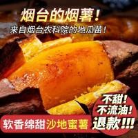 批发红心香甜地瓜番薯5斤 山东烟台新鲜现挖地瓜烟暑25