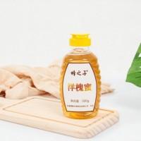 厂家直销 洋槐蜂蜜 洋槐蜜 500g瓶装蜂蜜 蜂蜜批发散装贴牌代加工