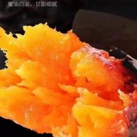 新疆雪山蜜薯软糯香甜西域红心小蜜薯净重5斤装包邮支持一件代发