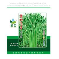 现货批发翠竹3号空心菜种子 叶片细长500克蔬菜种子基地农户选择