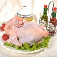 厂家供应淘汰蛋鸡老母鸡土鸡全净堂清除鸡油气管食管价格实惠