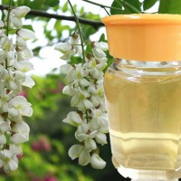 鲁山槐花蜜 原汁原味蜂蜜 池上特产 鲁山原蜜