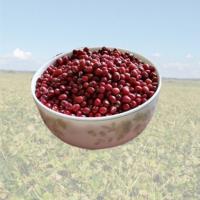 产地货源东北红豆 珍珠红小豆小红豆 豆类杂粮25kg/件厂家直销