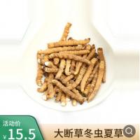断的虫草 西藏冬虫夏草断草1克2-3根超大虫草(买1克不包邮的)