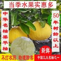 重庆特产梁平柚麻柚虎蜜柚梁山平顶柚口味甜中带苦麻农家老树柚