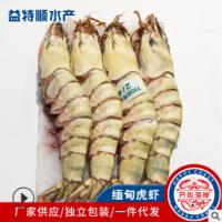 批发海鲜礼盒鲜活冷冻缅甸虎虾 海鲜水产大虾红虎虾斑节虾